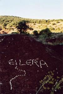 Eilera2007_15